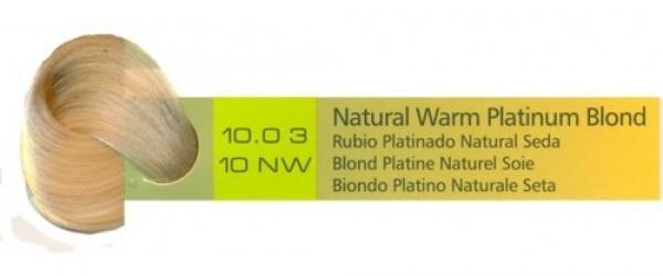 10.03, 10NW Natural Warm Platinum Blond (AC)