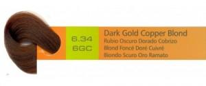 6.34, 6GC Dark Gold Copper Blond (AC)