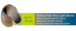 9.01, 9NA Natural Ash Very Light Blond (AC)