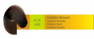4.3, 4G Golden Brown (AC)