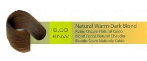 6.03, 6NW Natural Warm Dark Blond (AC)