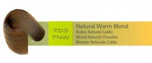 7.03, 7NW Natural Warm Blond (AC)